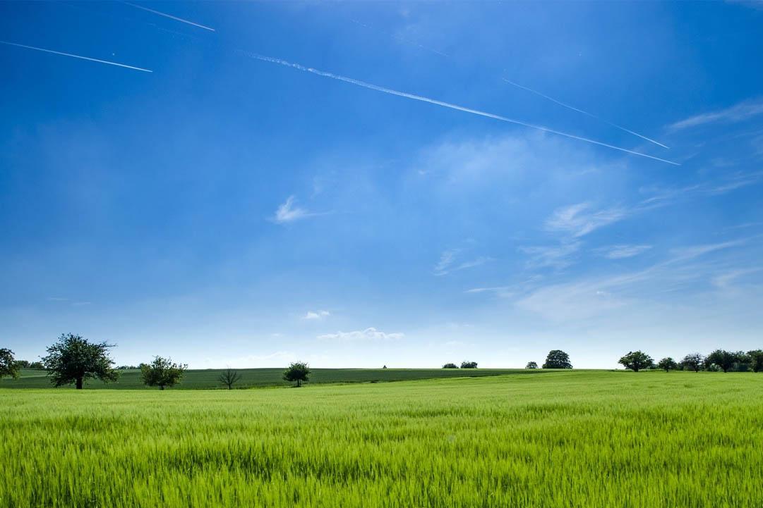 RITTMO : au service d'une agriculture durable